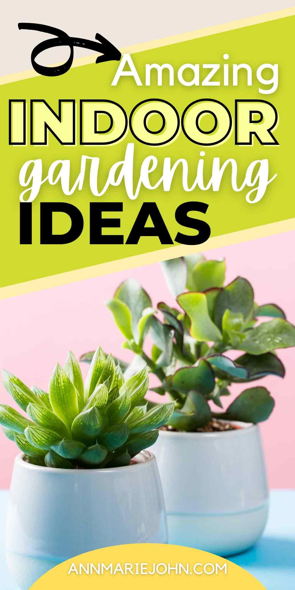 Amazing Indoor Gardening Ideas