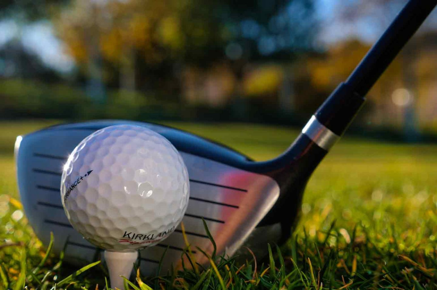 Everything You Need to Know About Golfing