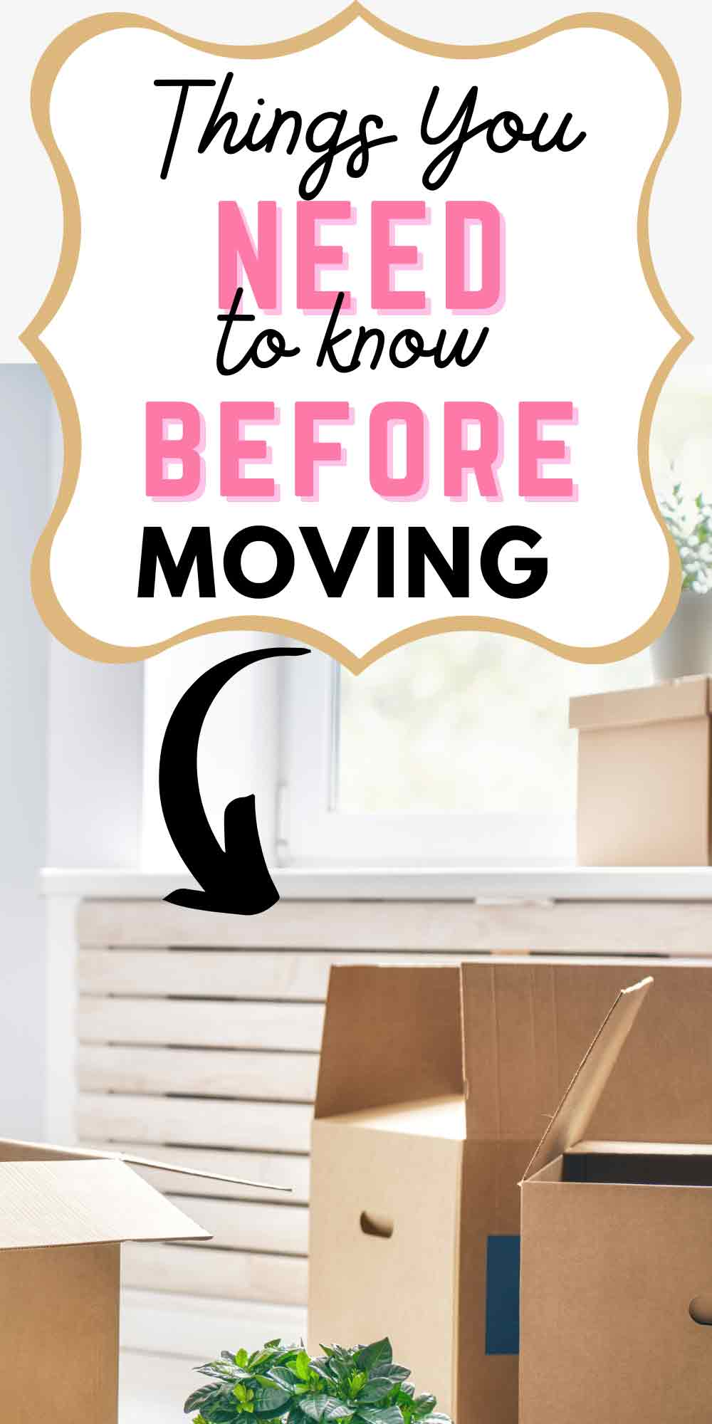 Important Things That You Need To Do Before Moving