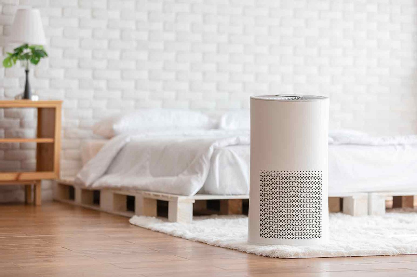 Qualities to Look For in an Air Purifier