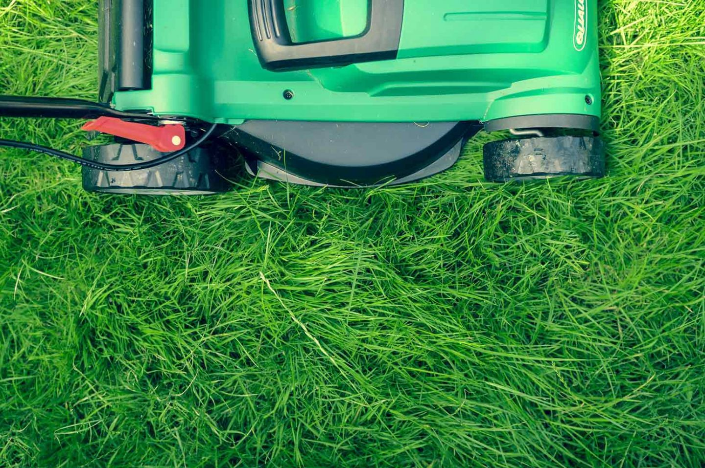 Top Things to Look for When Shopping for a Mower