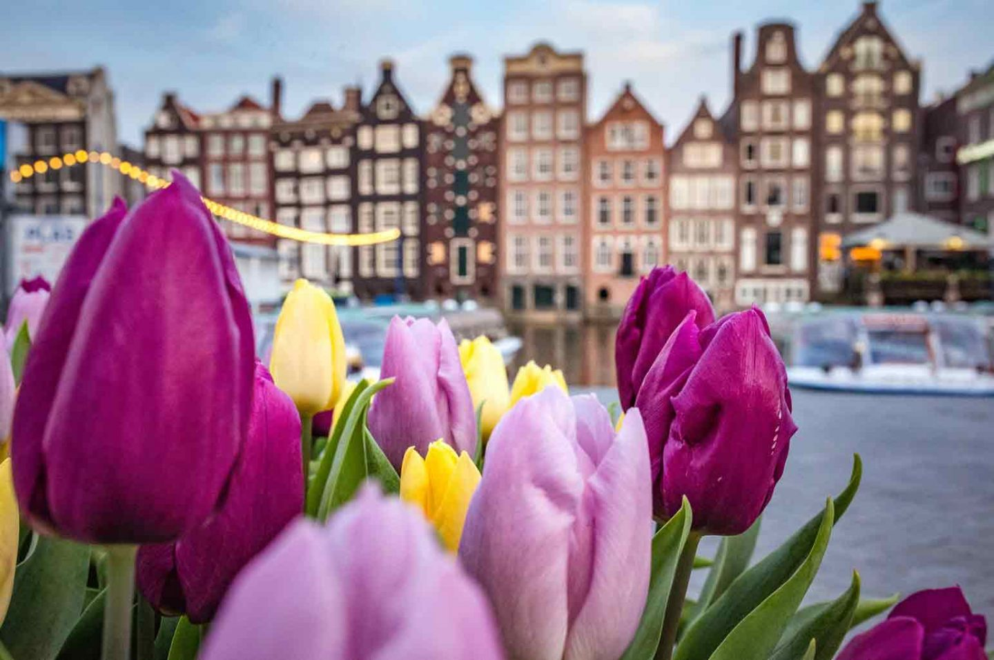 Experience the Breathtaking Beauty of Amsterdam