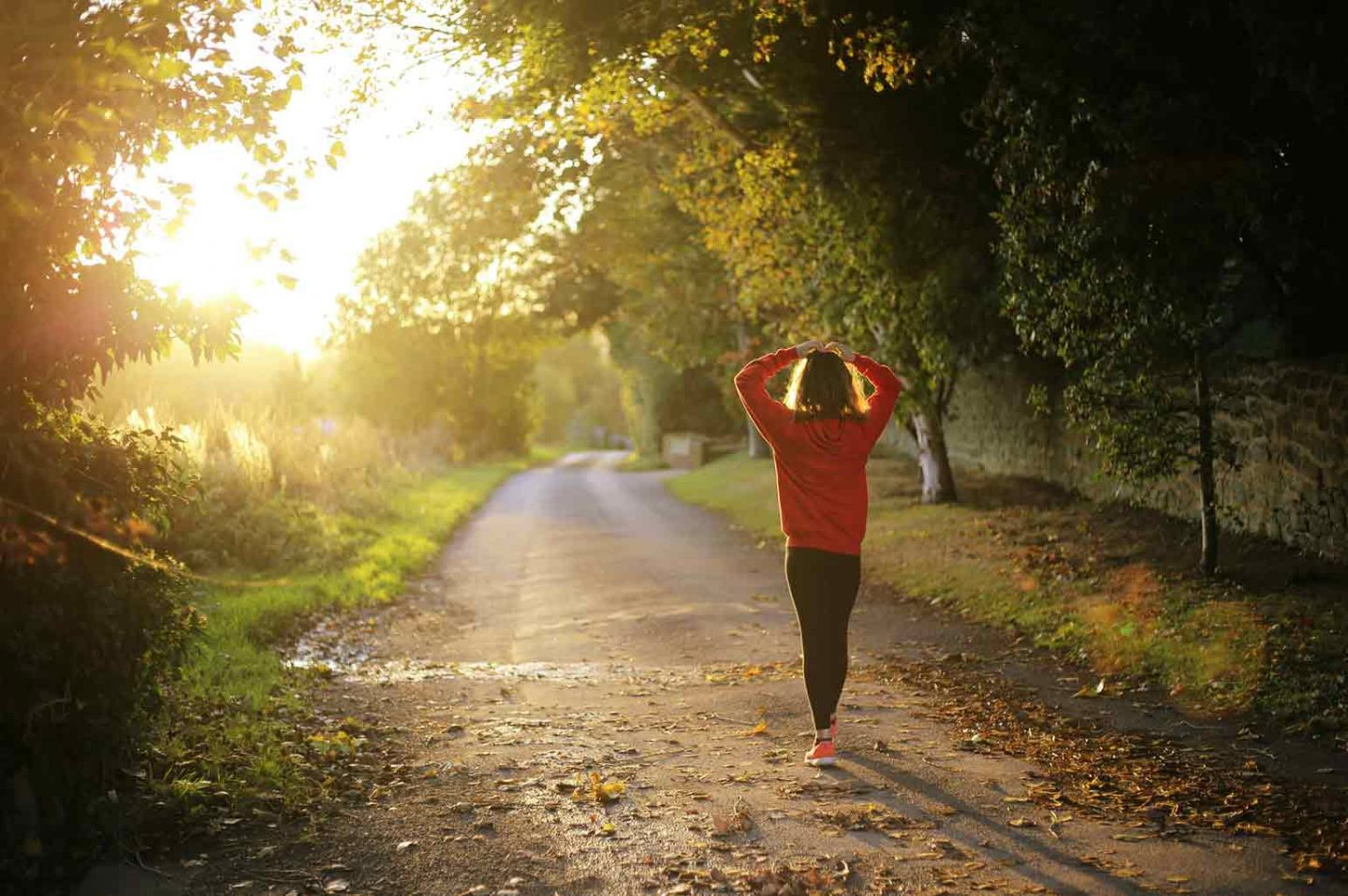 Quick Tips For Wellness And Health