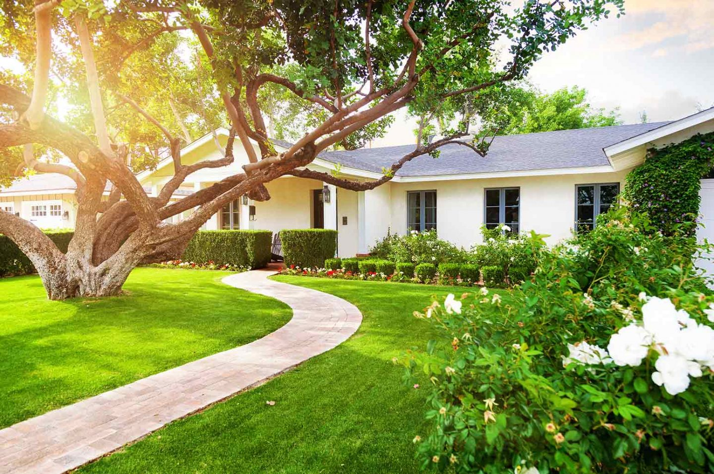 Getting Your Yard Ready for Summer