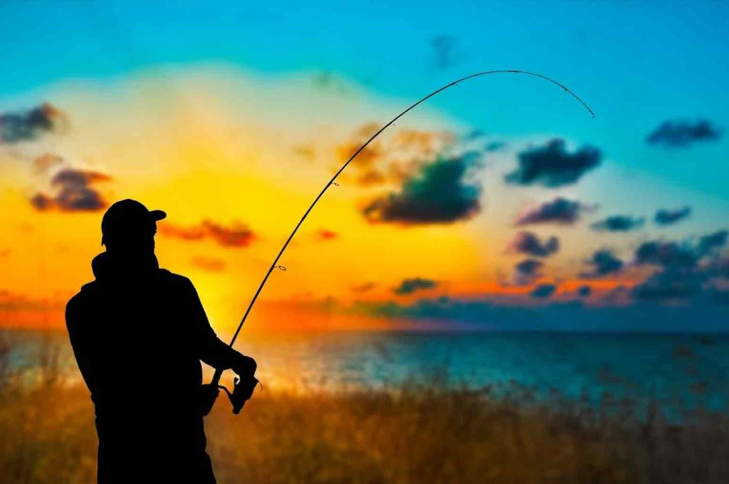 Tips To Improve Your Fishing Skills
