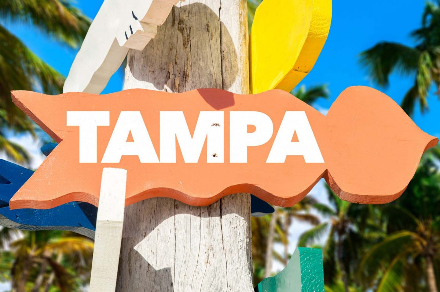 Tampa on a Budget