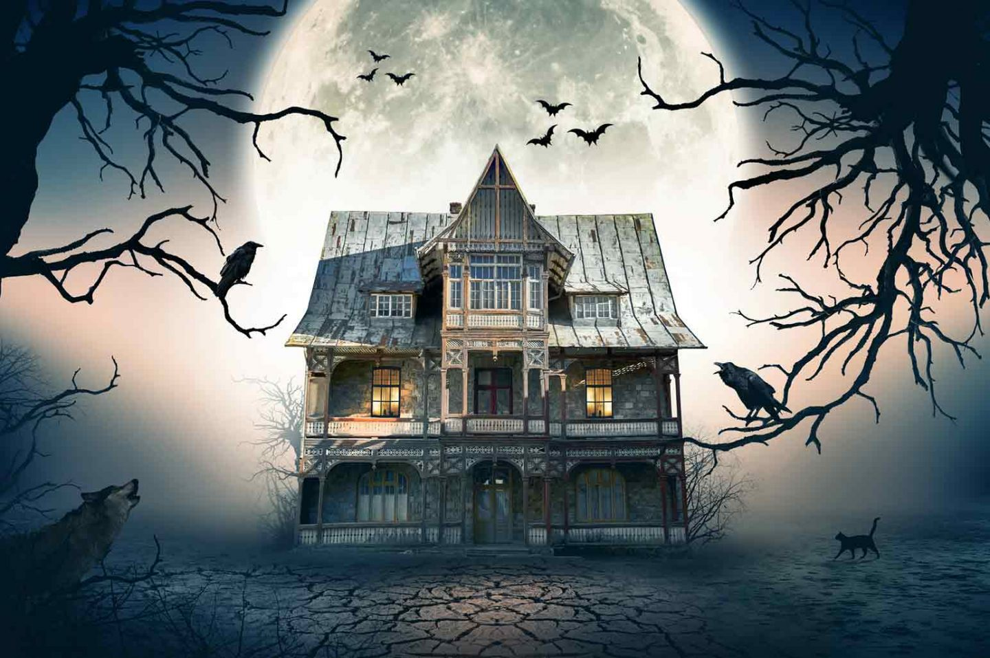 The Best Haunted Houses
